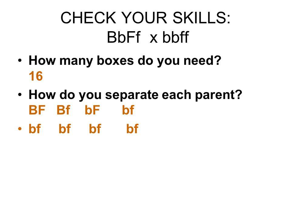 CHECK YOUR SKILLS: BbFf x bbff