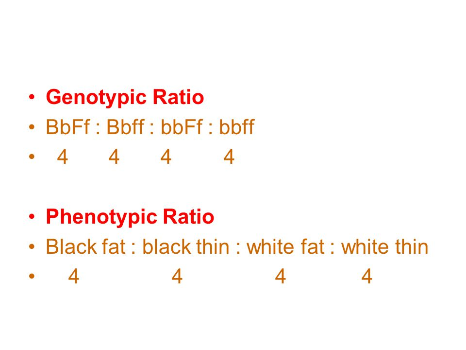 Genotypic Ratio BbFf : Bbff : bbFf : bbff. 4 4 4 4. Phenotypic Ratio. Black fat : black thin : white fat : white thin.