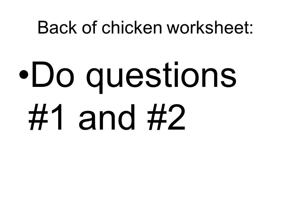 Back of chicken worksheet: