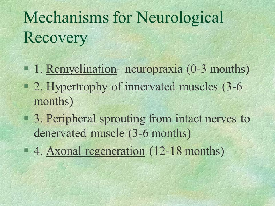 Mechanisms for Neurological Recovery