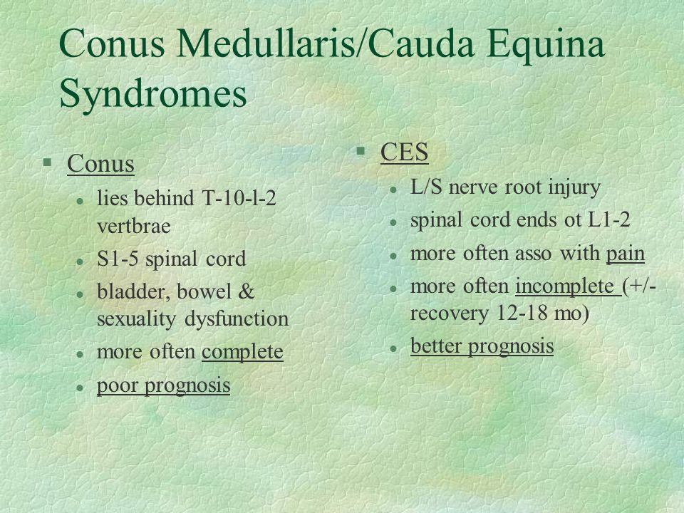 Conus Medullaris/Cauda Equina Syndromes