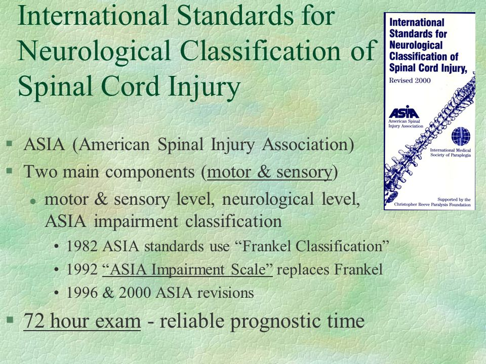 International Standards for Neurological Classification of Spinal Cord Injury