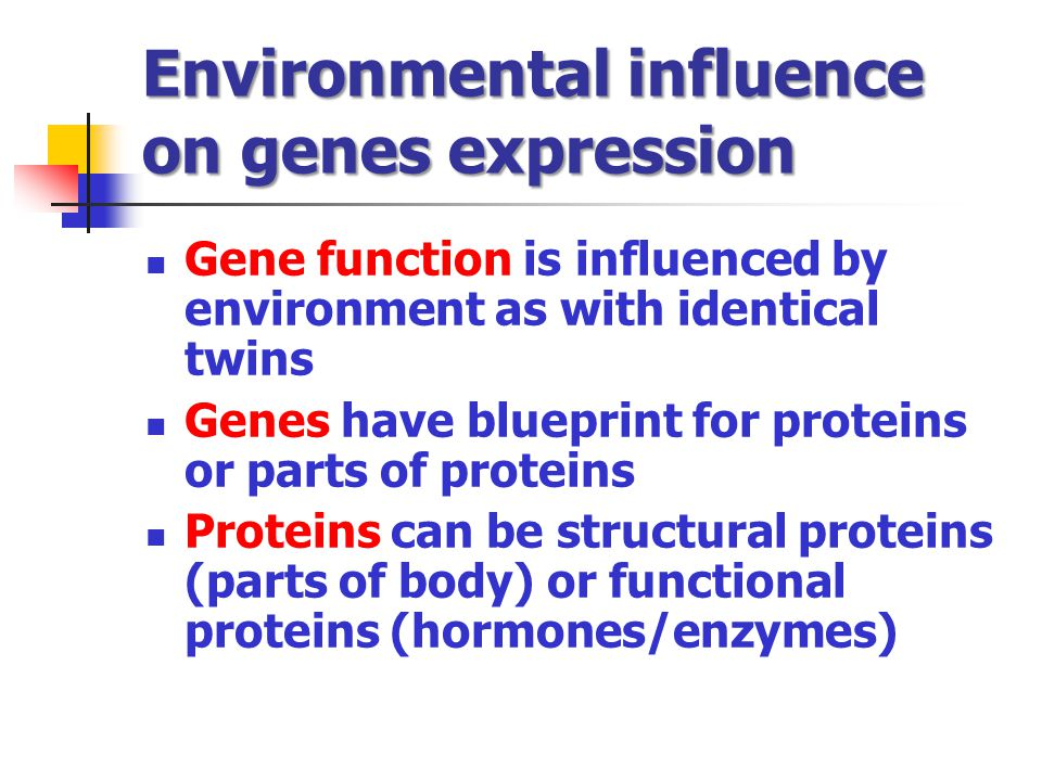 Environmental influence on genes expression
