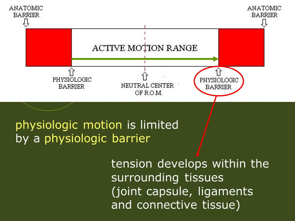 physiologic motion is limited by a physiologic barrier