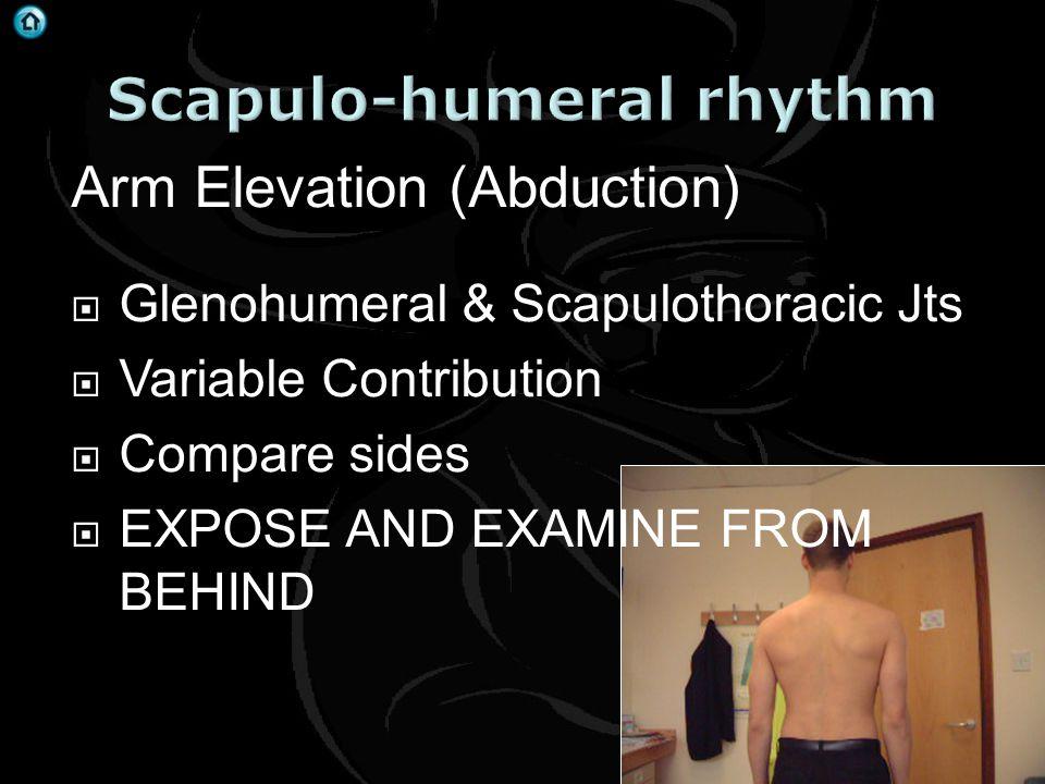 Scapulo-humeral rhythm