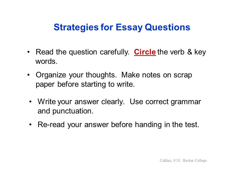 Strategies for Essay Questions