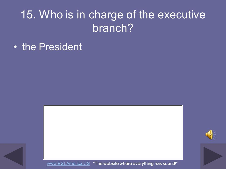 15. Who is in charge of the executive branch