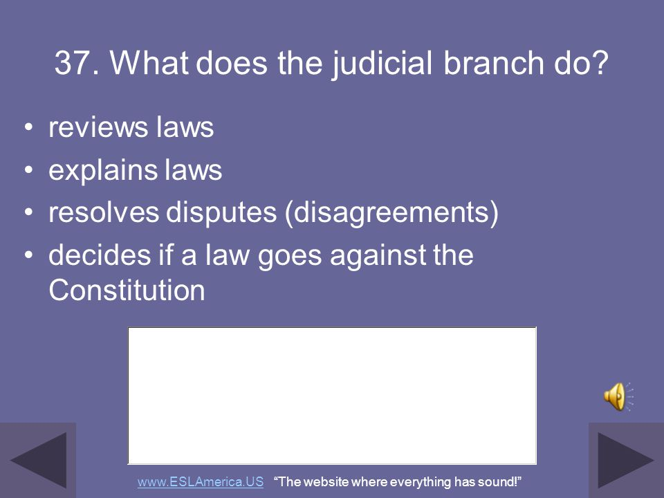 37. What does the judicial branch do