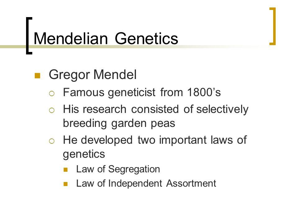 Mendelian Genetics Gregor Mendel Famous geneticist from 1800's