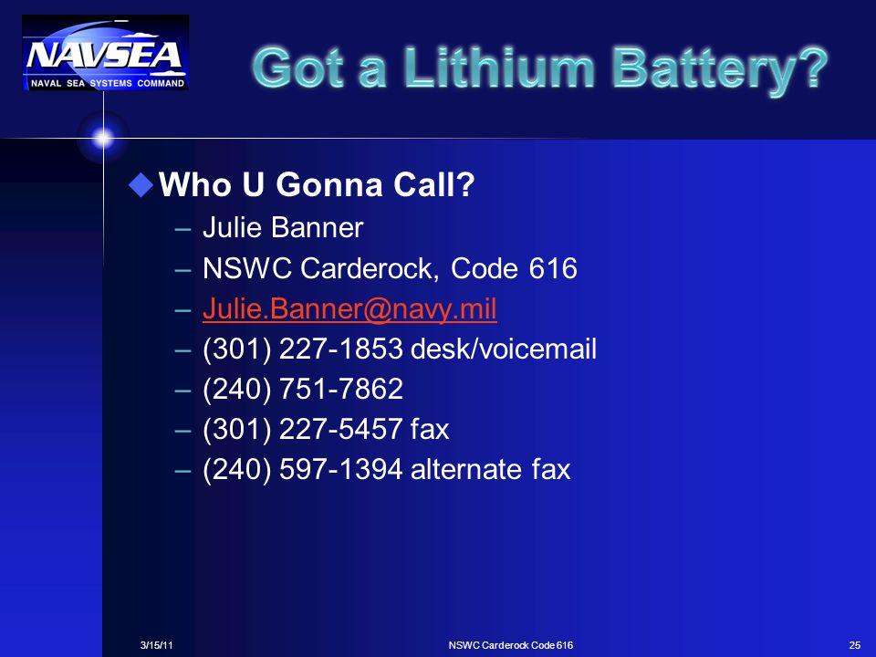 Got a Lithium Battery Who U Gonna Call Julie Banner
