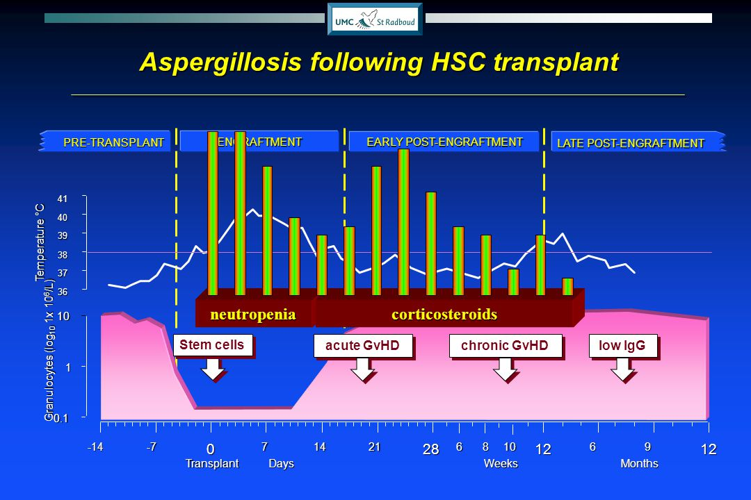 Aspergillosis following HSC transplant