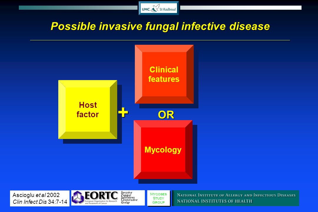 Possible invasive fungal infective disease