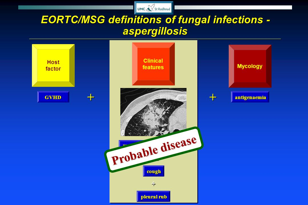 EORTC/MSG definitions of fungal infections -aspergillosis