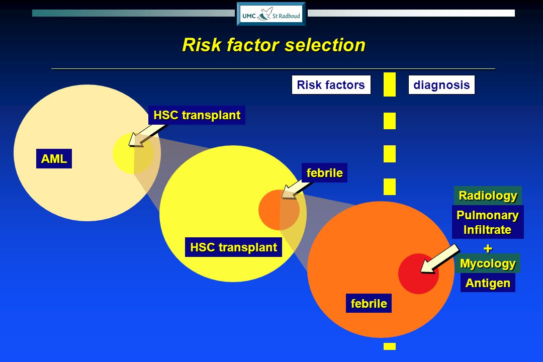 Risk factor selection + Risk factors diagnosis AML HSC transplant