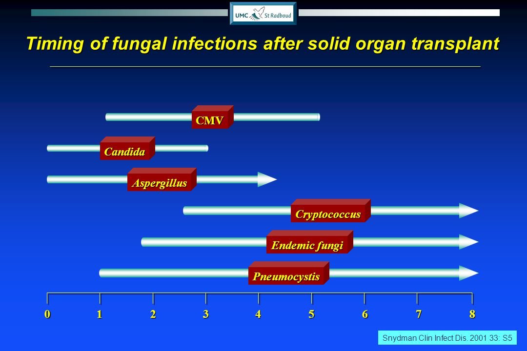 Timing of fungal infections after solid organ transplant