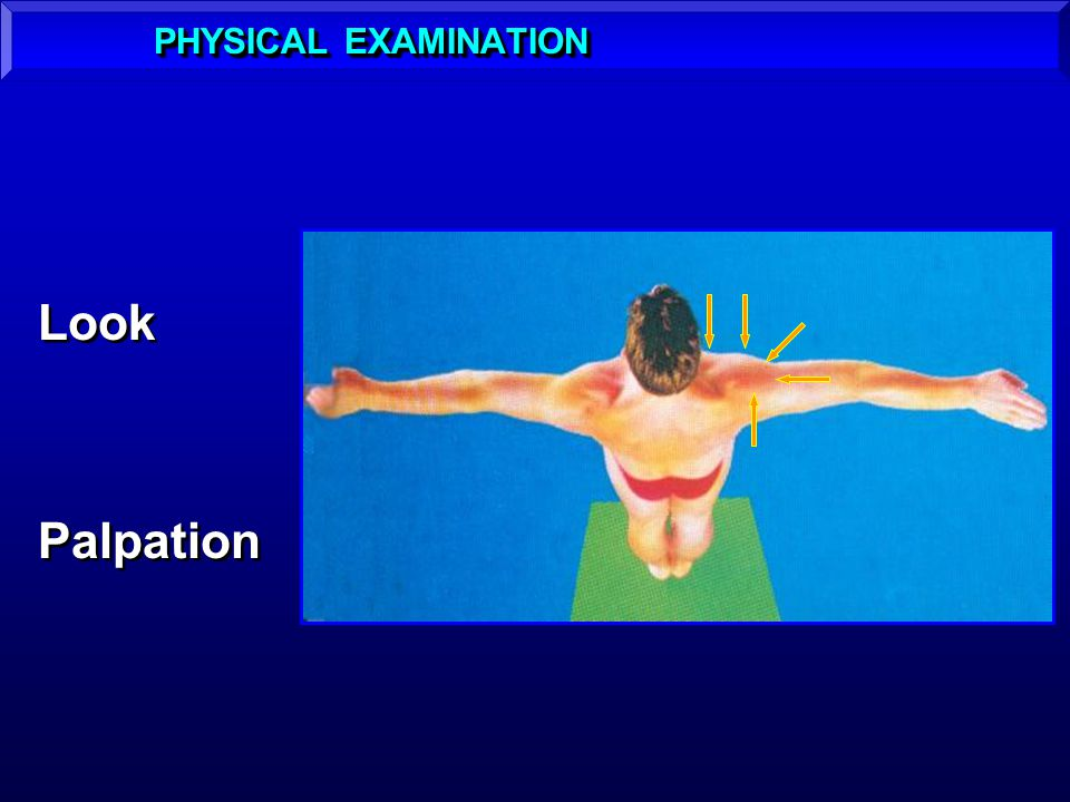 PHYSICAL EXAMINATION Look Palpation