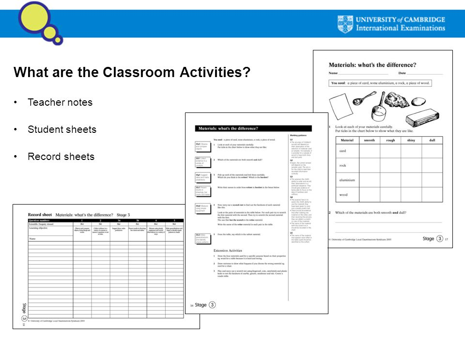 What are the Classroom Activities