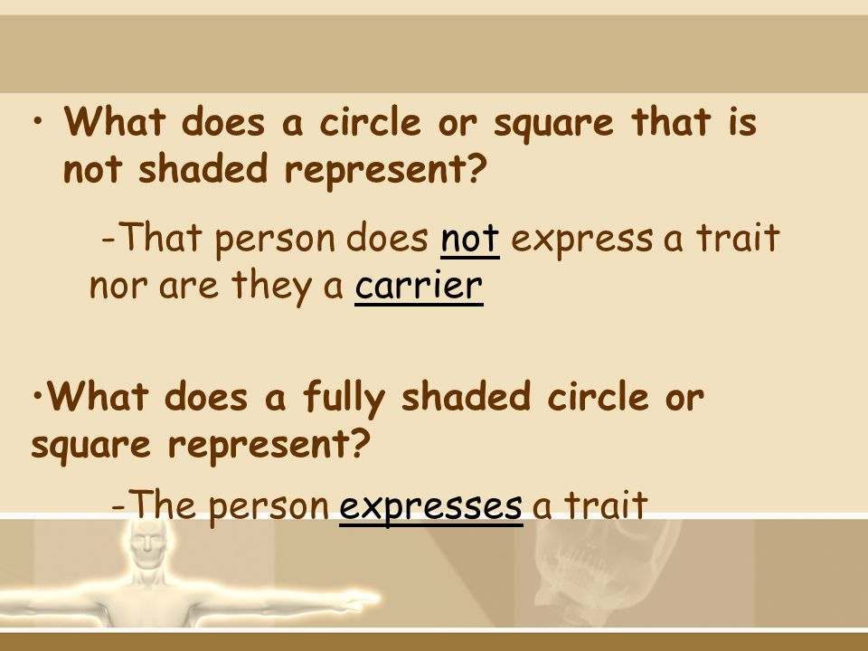 What does a circle or square that is not shaded represent