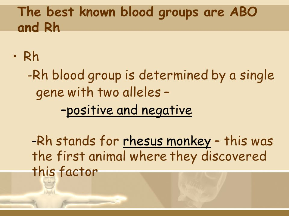 The best known blood groups are ABO and Rh
