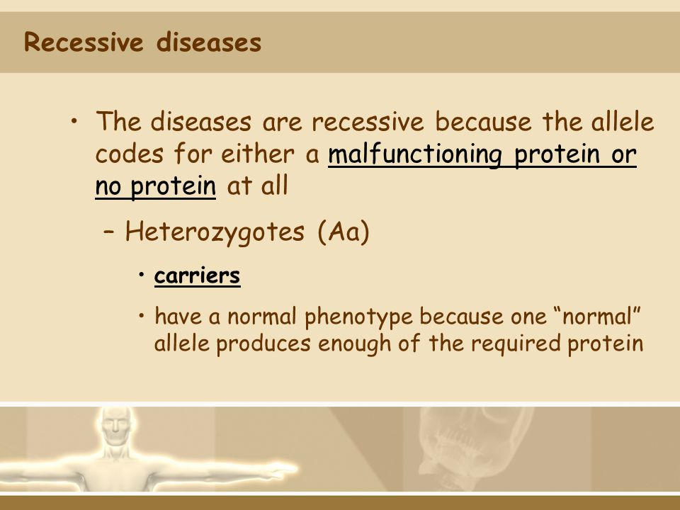 Recessive diseases The diseases are recessive because the allele codes for either a malfunctioning protein or no protein at all.