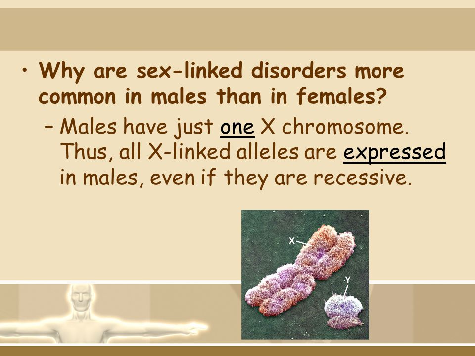 Why are sex-linked disorders more common in males than in females