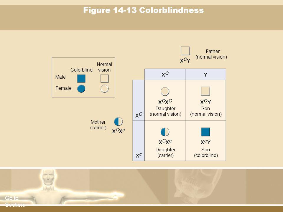 Figure 14-13 Colorblindness