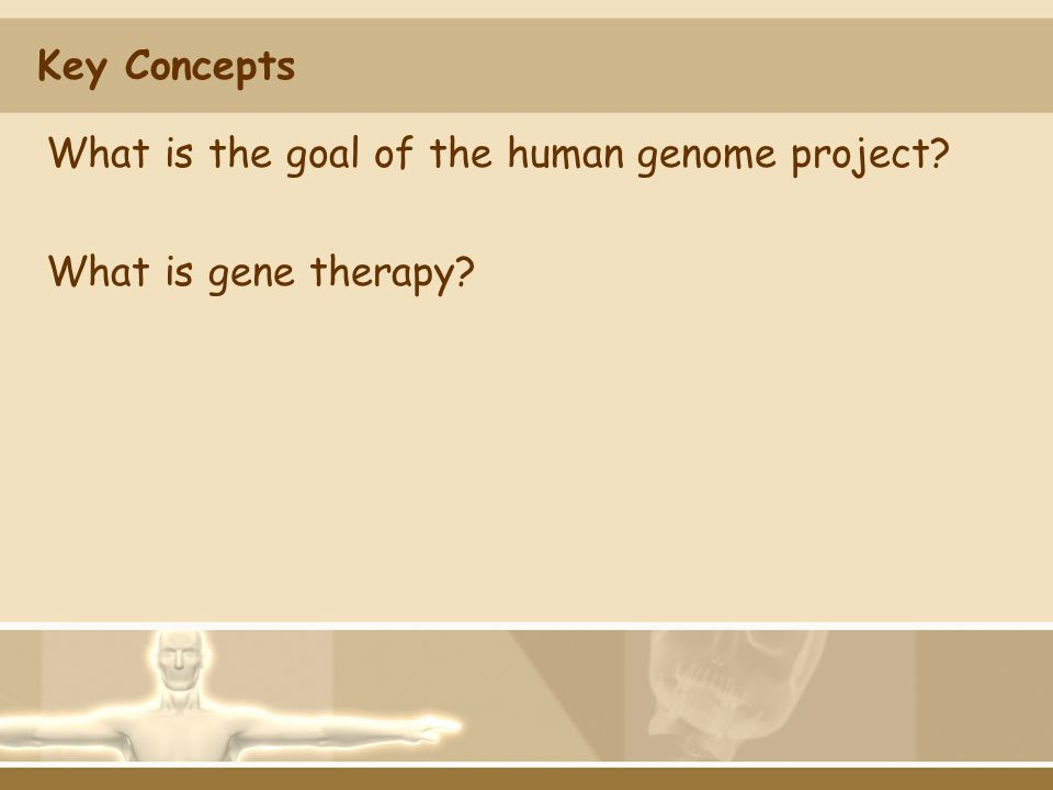 Key Concepts What is the goal of the human genome project What is gene therapy