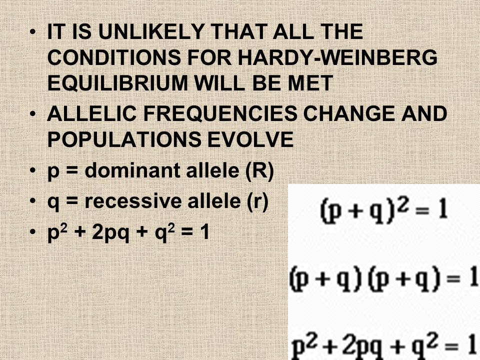 IT IS UNLIKELY THAT ALL THE CONDITIONS FOR HARDY-WEINBERG EQUILIBRIUM WILL BE MET