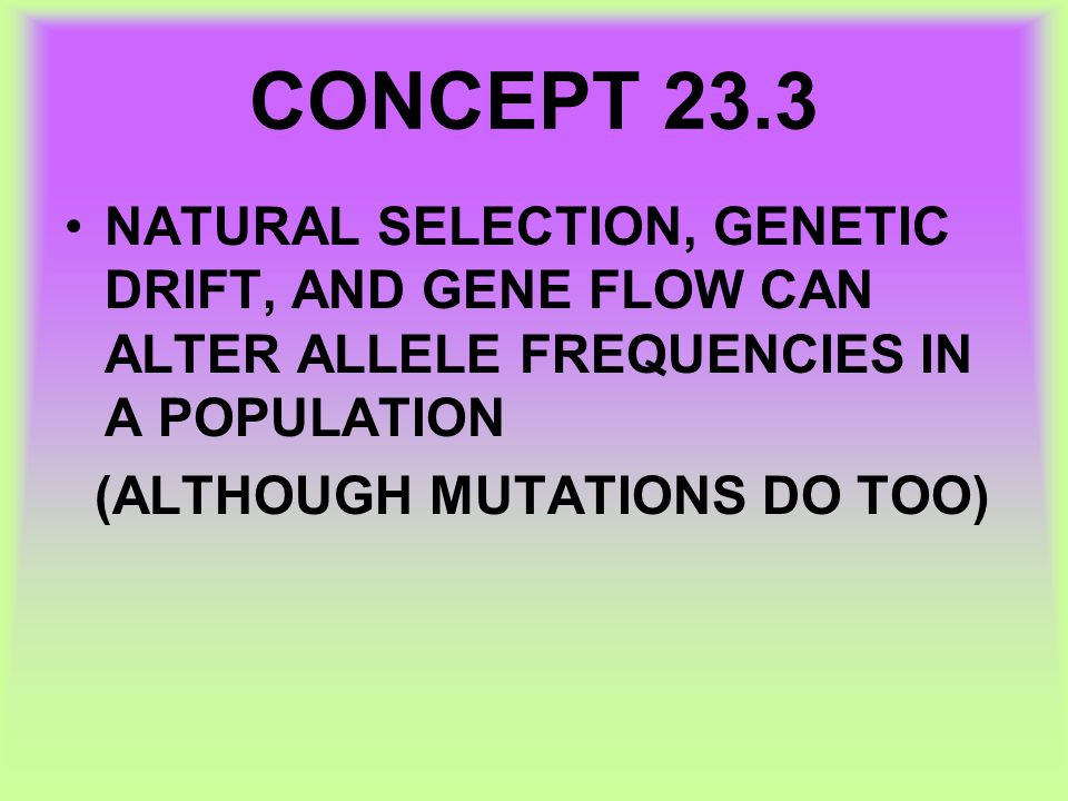 CONCEPT 23.3 NATURAL SELECTION, GENETIC DRIFT, AND GENE FLOW CAN ALTER ALLELE FREQUENCIES IN A POPULATION.