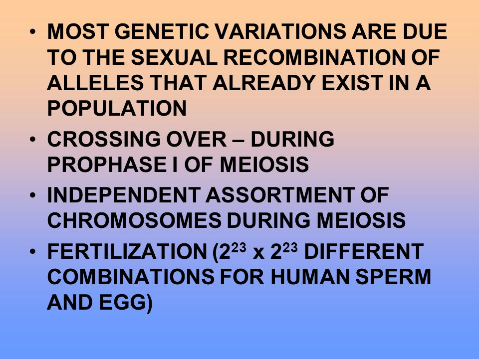MOST GENETIC VARIATIONS ARE DUE TO THE SEXUAL RECOMBINATION OF ALLELES THAT ALREADY EXIST IN A POPULATION