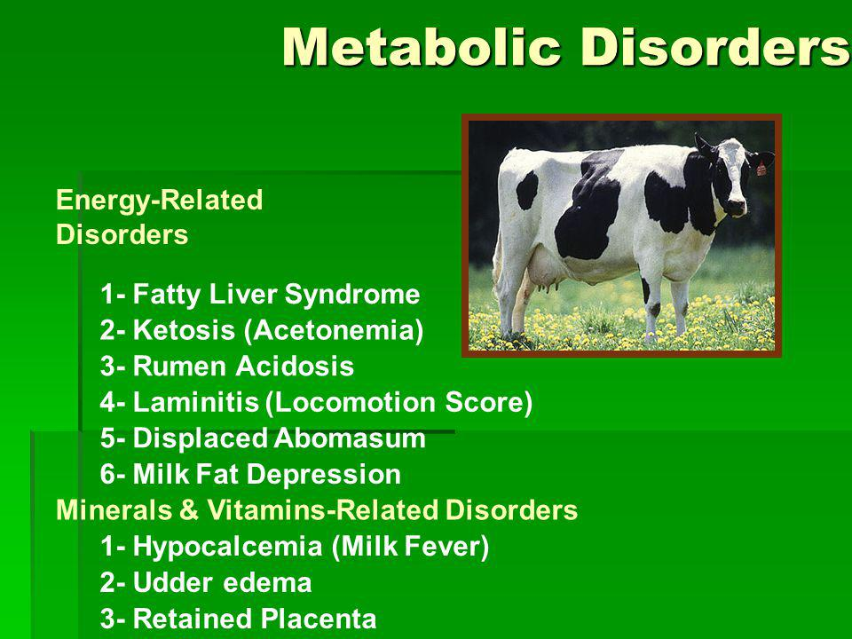 Metabolic Disorders Energy-Related Disorders 1- Fatty Liver Syndrome