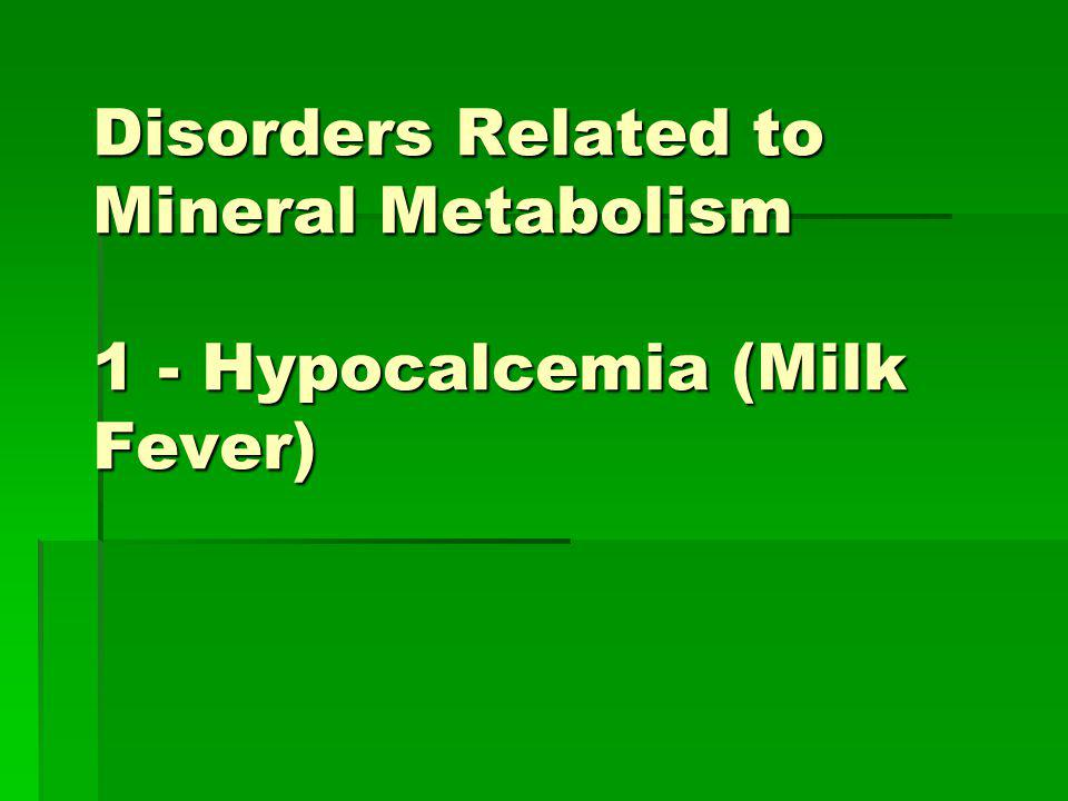 Disorders Related to Mineral Metabolism 1 - Hypocalcemia (Milk Fever)