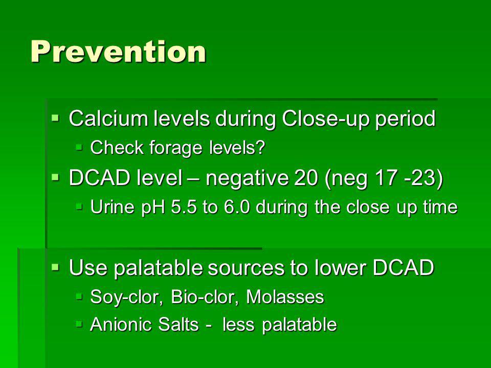 Prevention Calcium levels during Close-up period