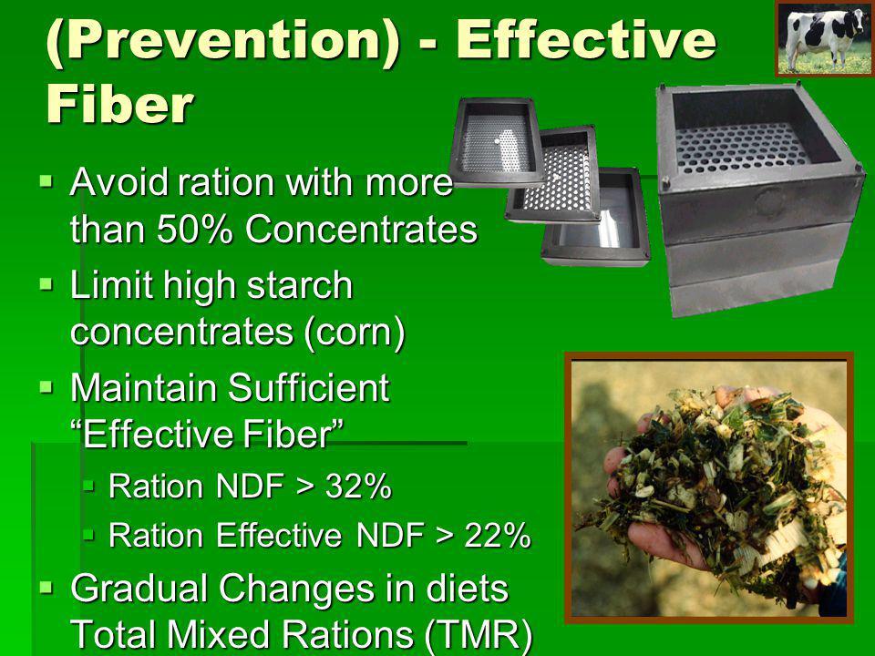 Rumen Acidosis (Prevention) - Effective Fiber