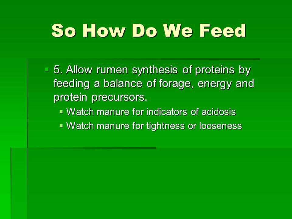 So How Do We Feed 5. Allow rumen synthesis of proteins by feeding a balance of forage, energy and protein precursors.