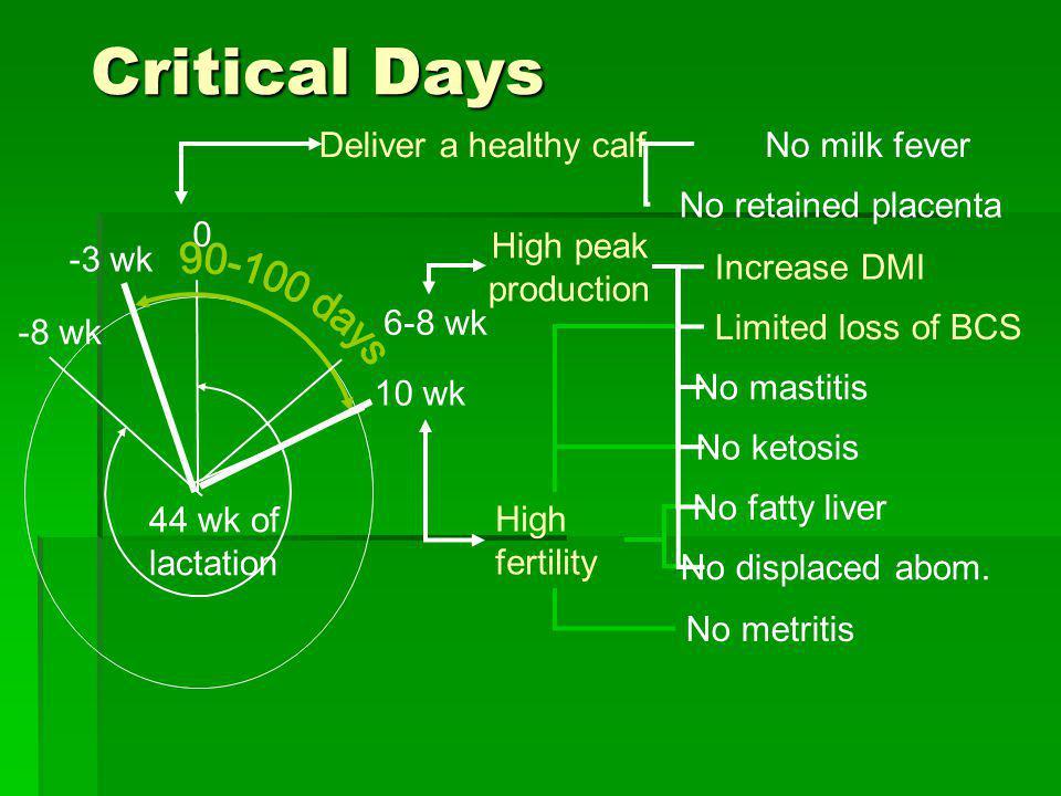 Critical Days 90-100 days Deliver a healthy calf No milk fever
