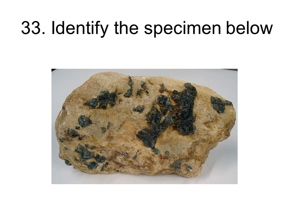 33. Identify the specimen below