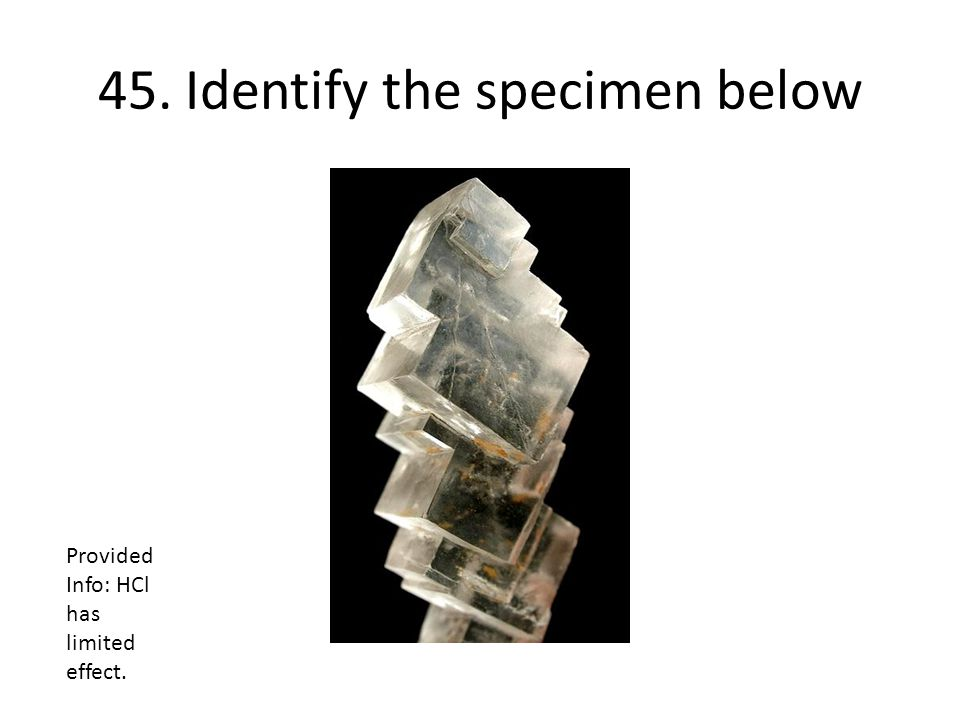 45. Identify the specimen below