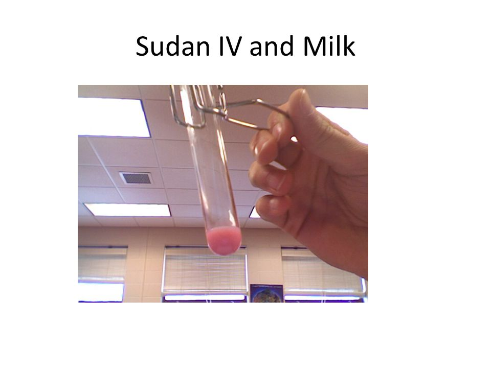 Sudan IV and Milk