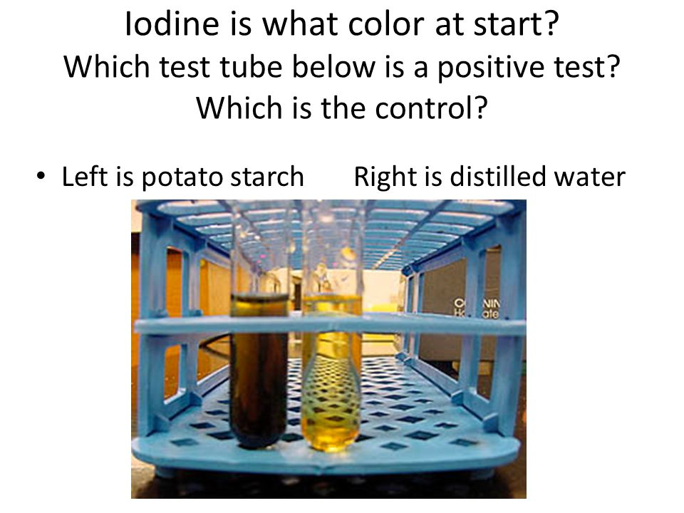 Iodine is what color at start Which test tube below is a positive test Which is the control