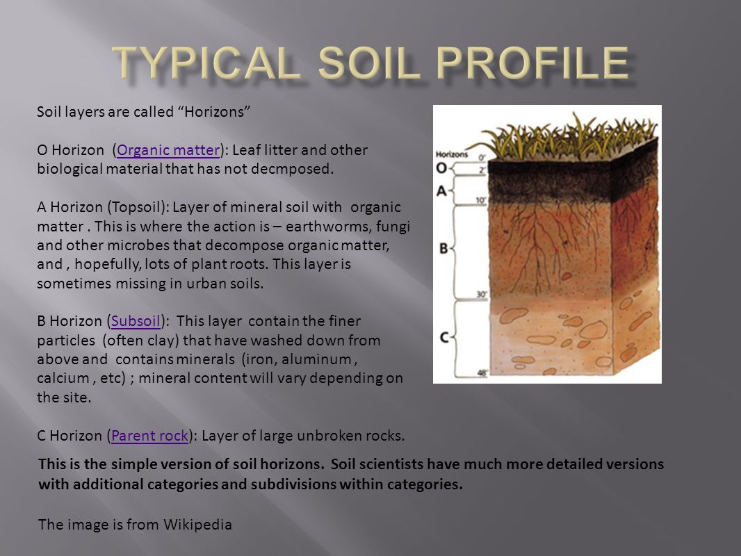 Soils ppt video online download for Soil profile video
