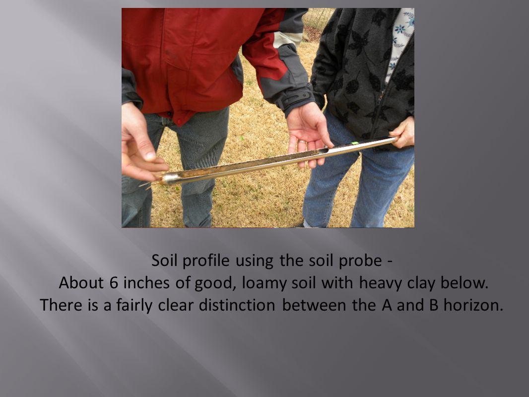 Soil profile using the soil probe -