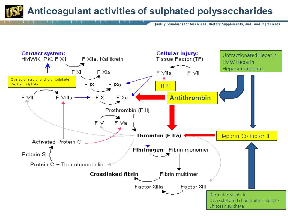 Anticoagulant activities of sulphated polysaccharides
