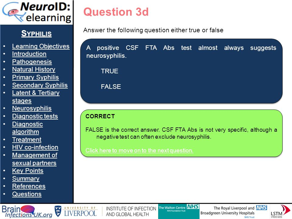 Question 3d Syphilis Learning Objectives Introduction Pathogenesis