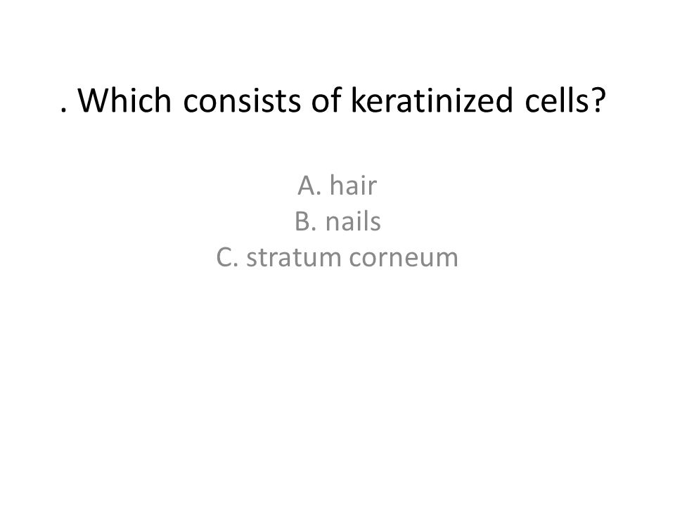 . Which consists of keratinized cells