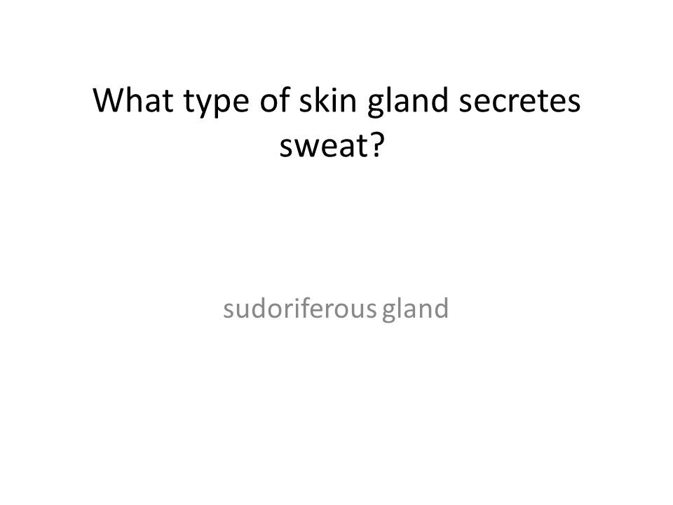 What type of skin gland secretes sweat