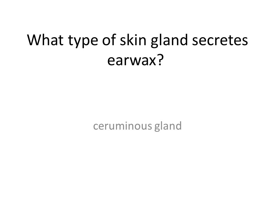 What type of skin gland secretes earwax