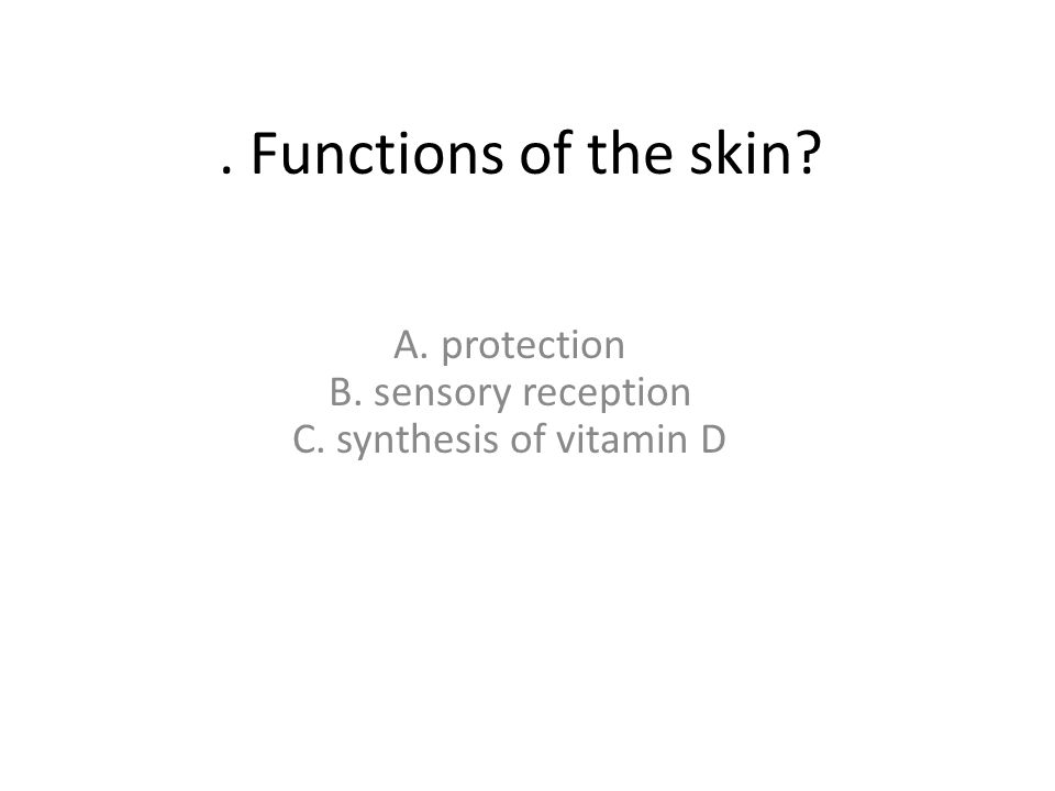 A. protection B. sensory reception C. synthesis of vitamin D