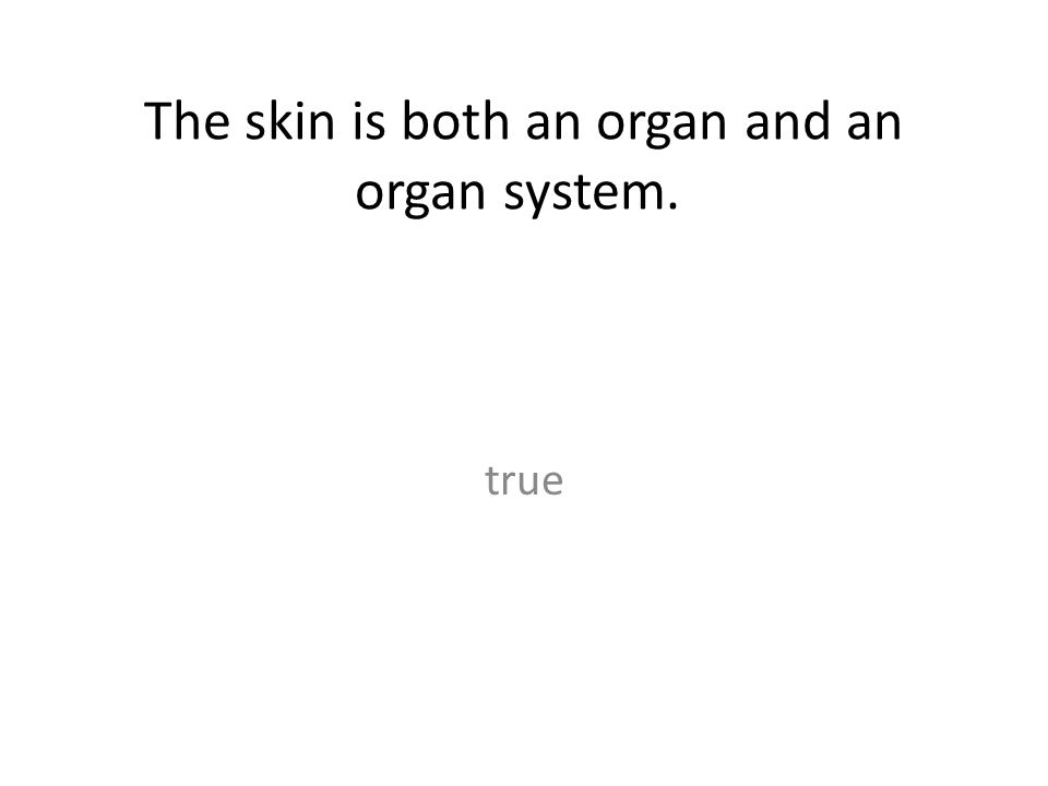 The skin is both an organ and an organ system.