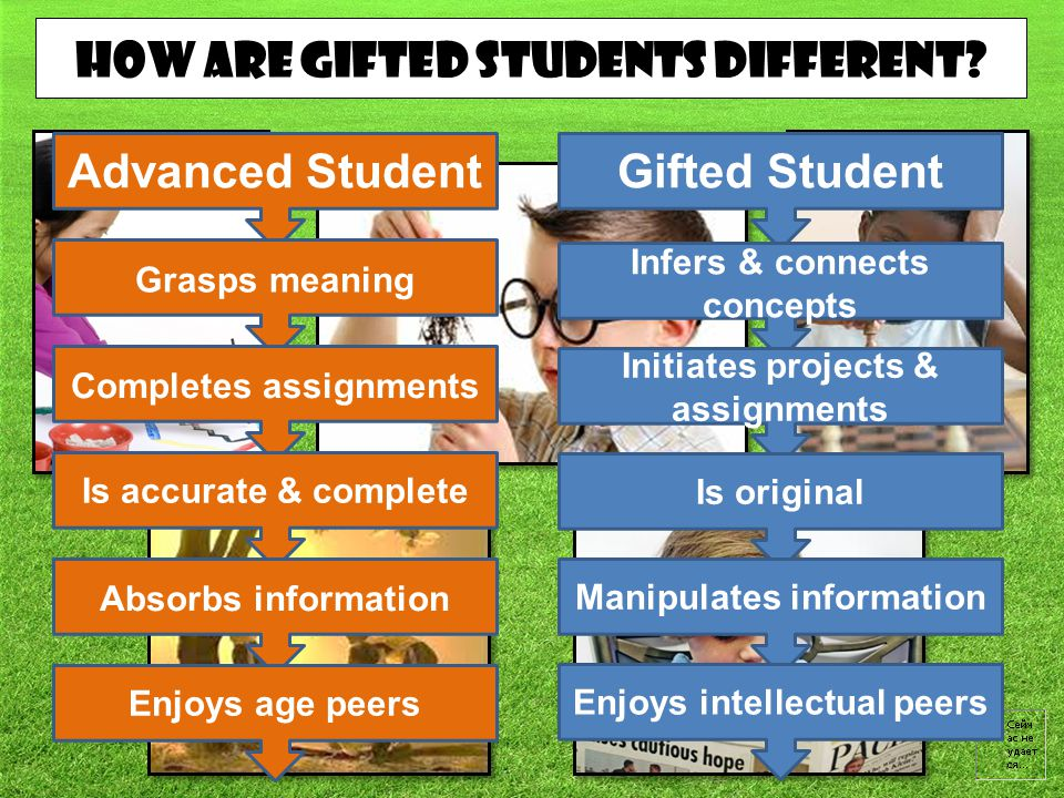 How are gifted students different